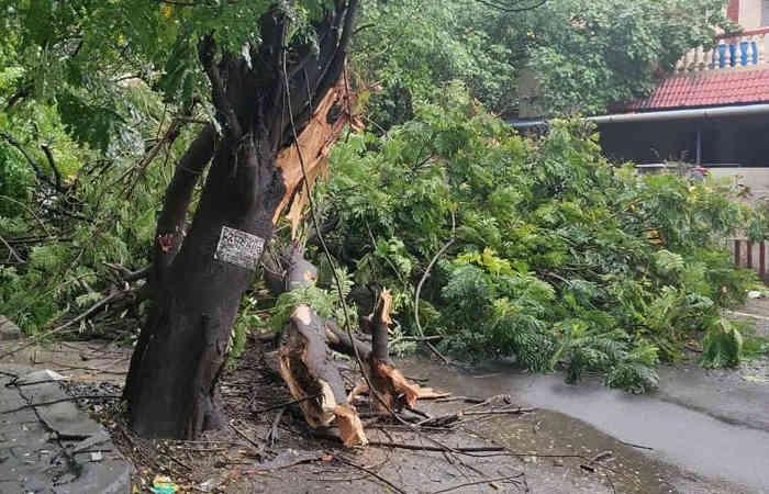 Photo of તમિલનાડુ-પુડ્ડુચેરીમાં ભારે વરસાદ, તોફાની પવન સાથે નિવાર વાવાઝોડુ ત્રાટક્યું